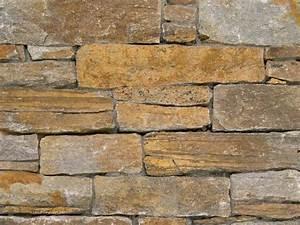 Parement Bois Adhesif : parement bois mur interieur 20171021164001 ~ Premium-room.com Idées de Décoration
