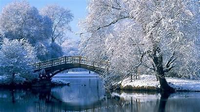 Winter Nature 1080p Wallpapers 4k Amazing Wallpapertag