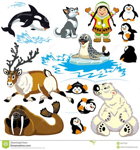polar animals clip art cliparts
