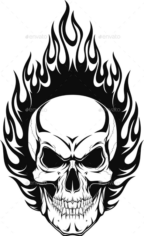 human skull  andrey graphicriver