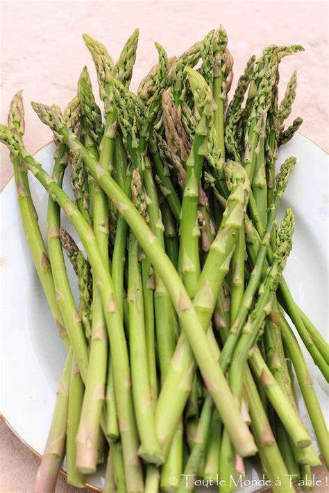 comment cuisiner des asperges cuisiner les asperges comment cuire les asperges vertes