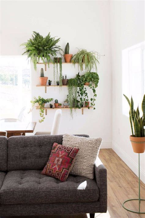 Garden Decoration With Plants by How To Create A Killer Garden Wall In Your Apartment