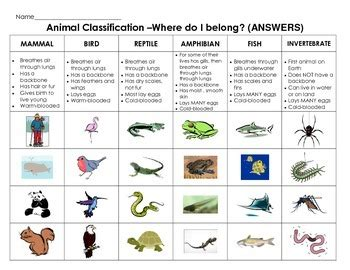 Animal Classification Cut & Paste: Sort animals by