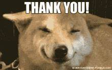 Thank You GIF - Thank You - Discover & Share GIFs