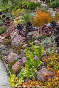 26 best succulent garden ideas around the world jardins With awesome amenagement petit jardin exotique 8 1001 idees et conseils pour amenager une rocaille fleurie