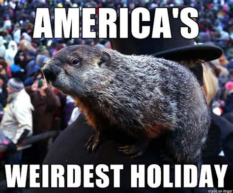 Groundhog Memes - groundhog day 2017 all the memes you need to see heavy com page 9