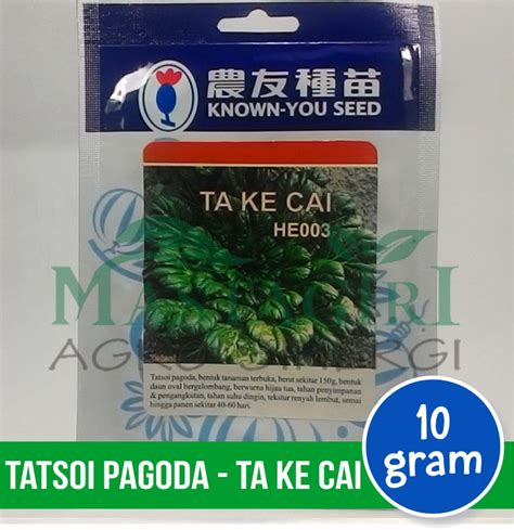 jual tatsoi pagoda known you seed quot ta ke cai