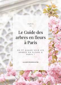 Les Fleurs Paris : le guide pratique des arbres en fleurs paris lodie ~ Voncanada.com Idées de Décoration