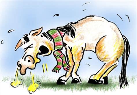beispiel ein pferd hat husten tatjanas pferde mobil