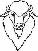 Buffalo Coloring Bison Drawing Head Draw Animals Wildlife Sketch Printable Getdrawings Templates Outline Template sketch template