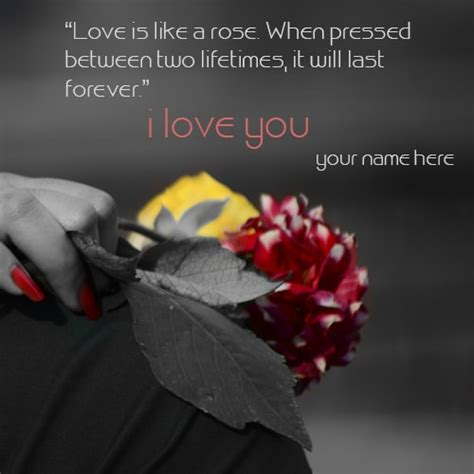 write   love rose quotes images