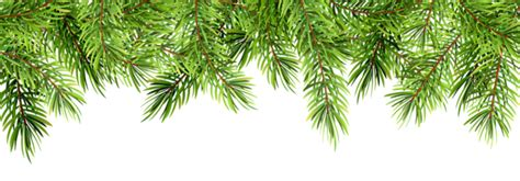 christmas pine decor transparent png clip art gallery