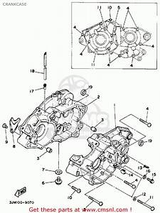 Yamaha Blaster Engine Diagram  U2013 Best Diagram Collection