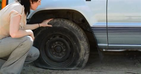 rubber fix plantworkshopinfo