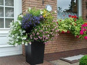 Blumenkübel Bepflanzen Vorschläge : pflanzk bel fotoshooting bei laarnis referenzkundenblog ~ Frokenaadalensverden.com Haus und Dekorationen