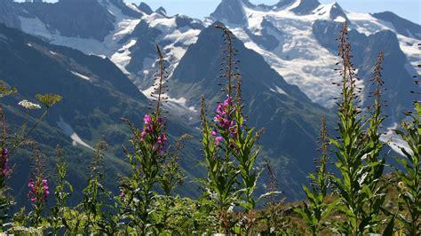 วอลเปเปอร์ : ธรรมชาติ, หุบเขา, ถิ่นทุรกันดาร, เทือกเขาแอล ...
