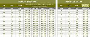 What Is Uk Size 6 Shoes In European Division Of Global