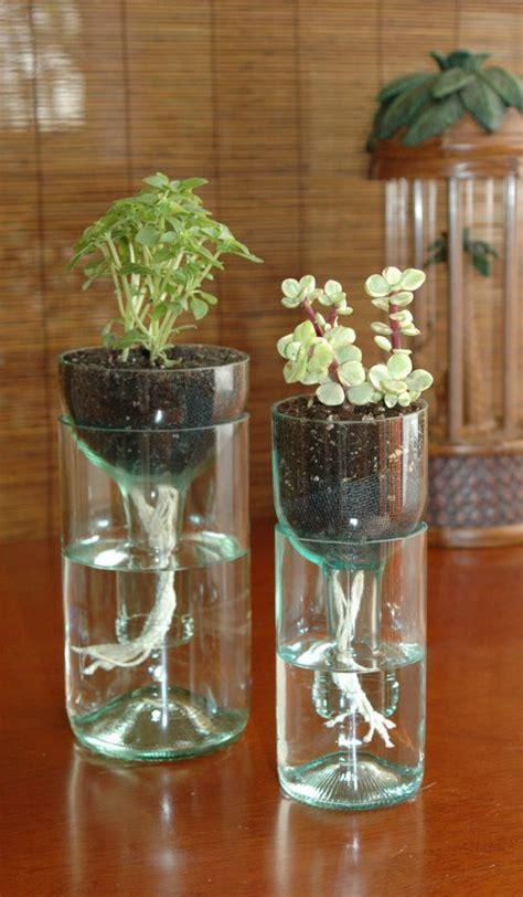 diy  watering wine bottle planter