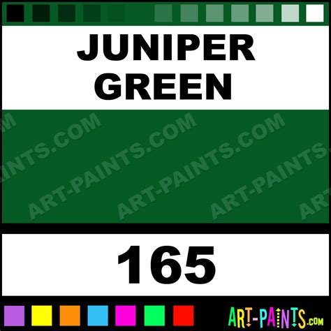 juniper green polychromos pastel paints 165 juniper