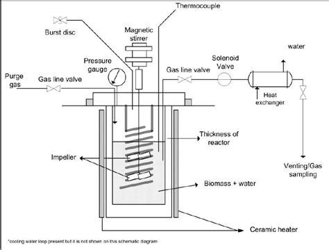 schematic diagram  autoclave reactor  hydrolysis