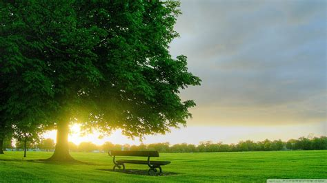 virtual download hd wallpapers bench landscapes