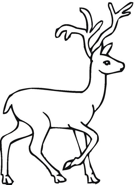 Coloring Deer by Free Deer Coloring Pages