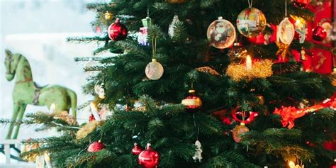 Living Room Christmas by How To Make Your Christmas Tree Last Longer Heloise Hints