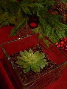picture of diy small succulent centerpiece for christmas