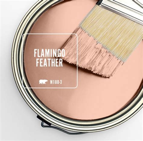 behr color of the month flamingo feather within the grove