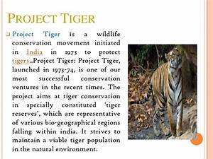 land law essay help creative writing story british council short essay on conservation of environment