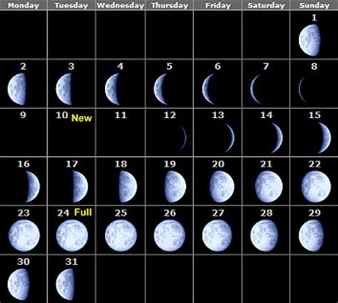 phases   moon calendar  month  month