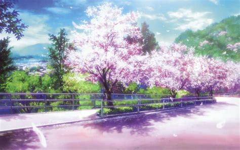 cherry blossom anime wallpapers wallpaper cave