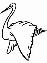 Stork Coloring Pages Storks Birds Printable Colors Recommended sketch template