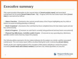 7 executive summary report example template progress report With project status executive summary template