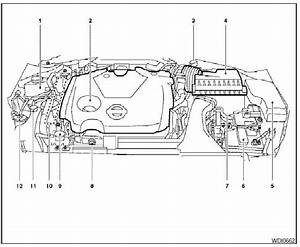 Engine Compartment Check Locations