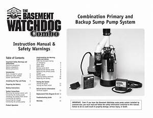 Combination Primary And Backup Sump Pump System