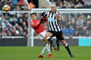 Benitez believes that Shelvey should play in the World Cup ...