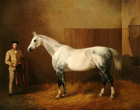 british paintings john dalby  white horse  dappled