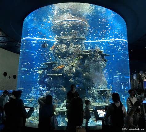s e a aquarium ed unloaded parenting lifestyle travel
