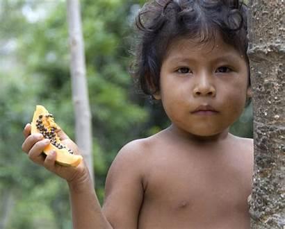 Brazil Amazon Tribe Indigenous Awa Young Brazilian