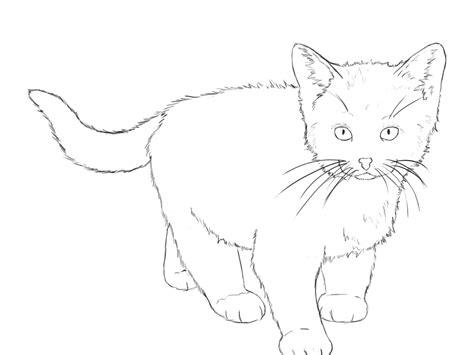 draw  kitten draw central