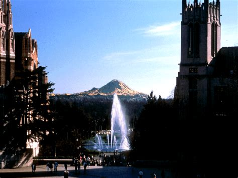 University Of Washington Photos. Market Research Analyst Education Requirements. How Much Is Liability Insurance For A Small Business. Learning Styles In Psychology. Creature Comforts Animal Hospital. Excel Database Functions Sponsoring An Orphan. Early Childhood Education Units Online. Carpet Cleaners In Minneapolis. Puerto Vallarta Luxury Villa Rentals