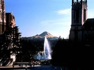 University Of Washington Photos