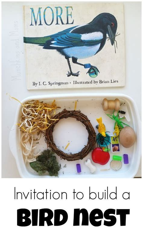 preschool bird songs and fingerplays 144 best images about preschool reading center storytime 689