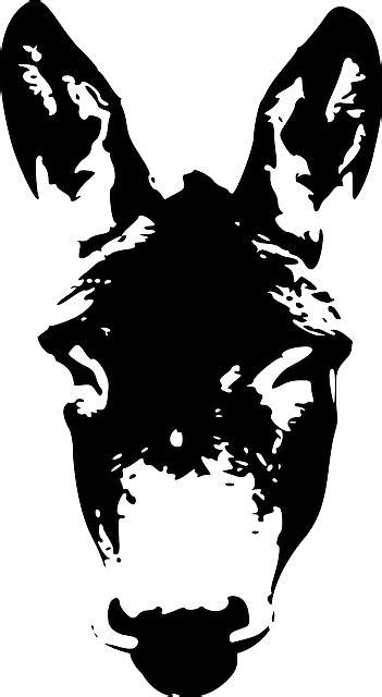 Esel Gesicht Kopf · Kostenlose Vektorgrafik auf Pixabay