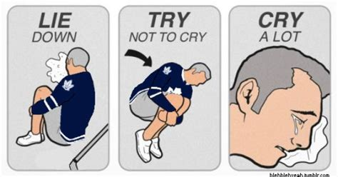 Try Not To Cry Meme - nhl try not to cry meme toronto maple leafs puck leafs pinterest crying meme toronto