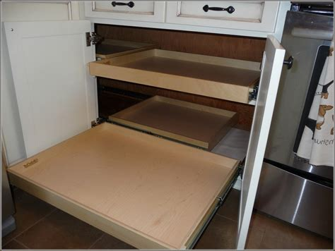Decorating Adorable Blind Corner Cabinet Pull Out