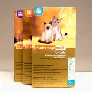 advantage multi cats advantage multi for cats 10150 petmart pharmacy 877