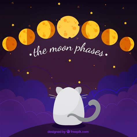 Moon Phases Background Cat Background With Phases Of The Moon Vector Free