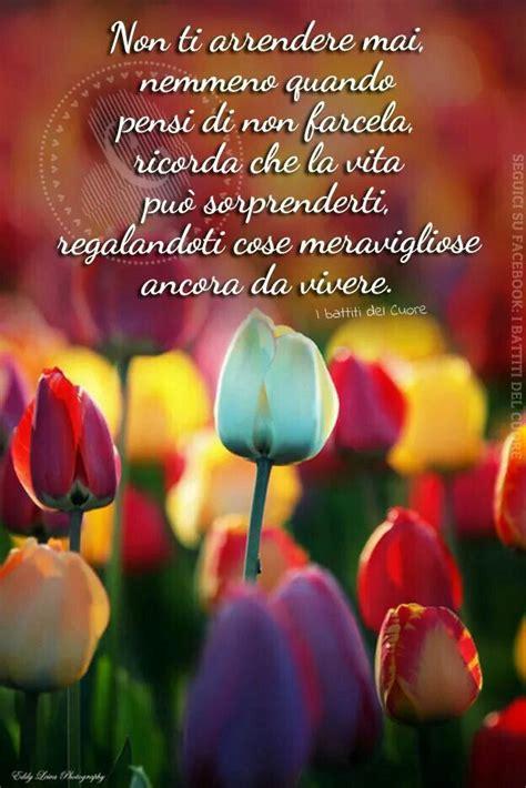 frasi i fiori frasi famose sui fiori 28 images immagini fiori